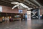 Fiskerimuseet i Esbjerg - The entrance hall at the Fisheries and Maritime Museum, Esbjerg, Denmark